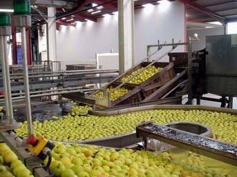 L'agro-alimentaire : une industrie qui recrute et ne délocalise pas