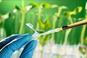 Biotechnologies : un gisement d'emplois