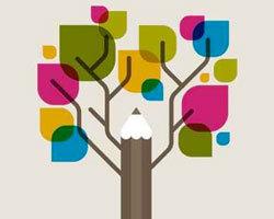 Métiers du web : le point sur les écoles et les filières de formation