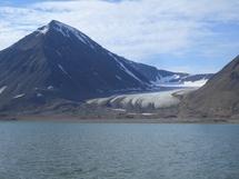 Fossile de feuille dans un glacier