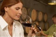 Oenologue : le maître des vins