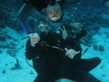 Plongée en mer Rouge : journal de bord