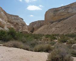 Le désert du Néguev, l'un des lieux où furent écrits des textes bibliques.