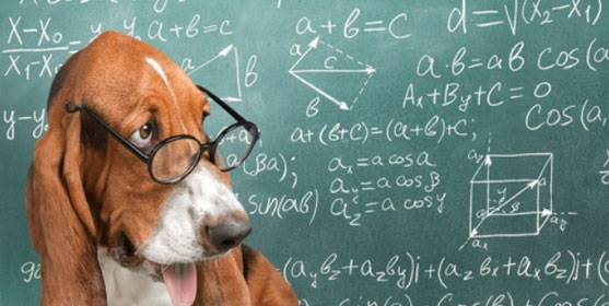 Bac 2019 : les corrigés des sujets de maths en S, ES et L