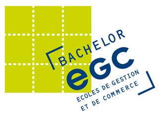 Ecoles de commerce : une nouvelle EGC à Strasbourg en 2013