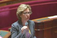 Geneviève Fioraso défend l'article 2 de sa loi à l'Assemblée le 15 mai.