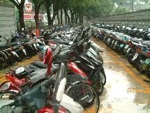 Les marées de scooters