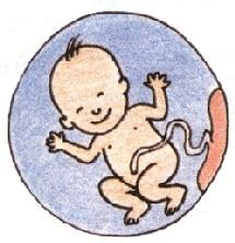 L'accouchement, dernier acte : la délivrance