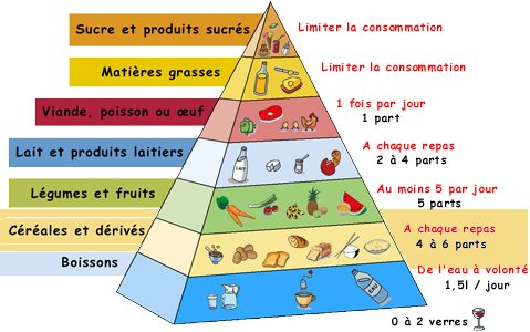 Comment manger quilibr - Table de composition des aliments simplifiee ...
