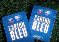 Euro 2016 : des places gratuites pour les jeunes lauréats de l'opération Carton Bleu