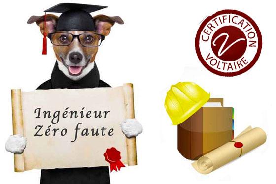 Une école d'ingénieur exige un niveau d'orthographe minimum pour délivrer son diplôme