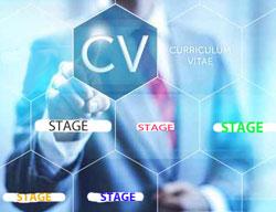 Comment valoriser un stage sur son CV ?