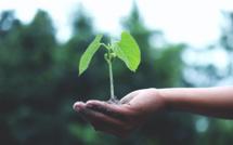 Le développement durable : une philosophie de l'économie
